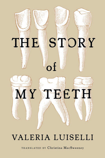 Cover art of The Story of My Teeth